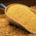 How To Start A Lucrative Soybean Meal Production in Nigeria: The Complete Guide