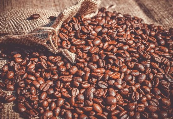 How To Start Coffee Bean Farming Business In Nigeria Or Africa: The Guide