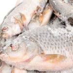 How To Start A Frozen Foods Business In Nigeria: The Complete Guide