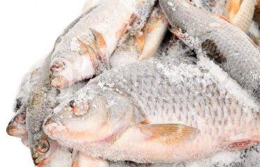 How To Start Frozen Foods Business In Nigeria Or Africa: Complete Guide