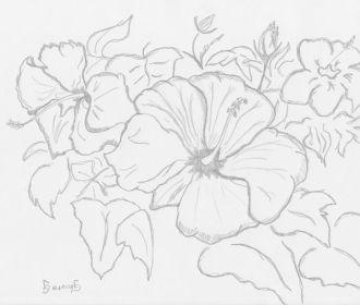 Sketches Of Flowers – Ciwall.com – Tattoo flower ideas