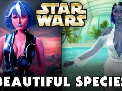 TOP 10 Most Beautiful Species in Star Wars