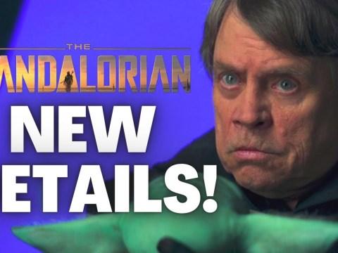 Big Details We Learned From the Luke Skywalker Special!
