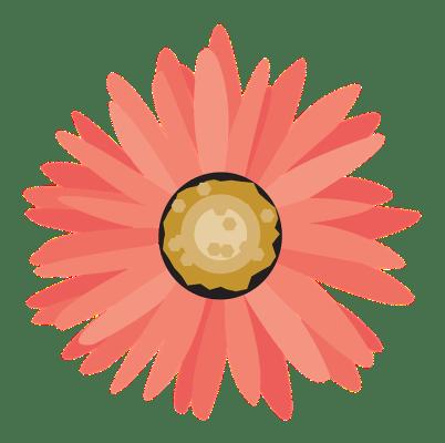 Dekoration hochzeit mieten mit Blumen service