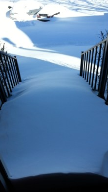 View from my front door. I know the steps and sidewalk are under here somewhere.