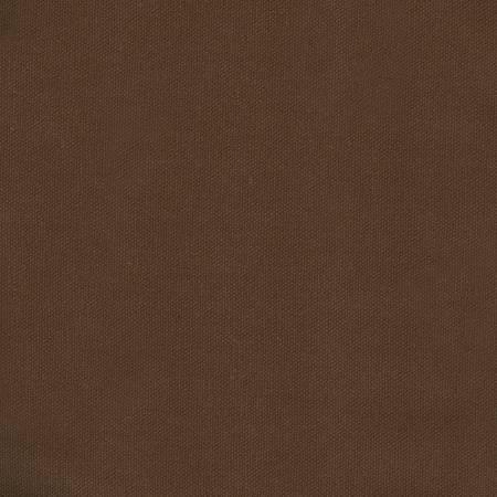 Soil Brown Duck Canvas