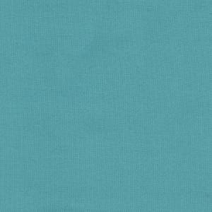 Duck Canvas Aqua Sky Blue