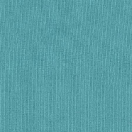 Duck Canvas Aqua Sky Blue