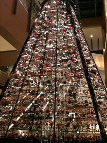 CFOの舞台裏-Santa Tree1