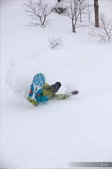 北海道が生んだ狂犬チワワこと、どーもボクのブログ-3