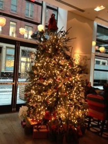 N.Y.に恋して☆-Christmas tree at Crotsby hotel