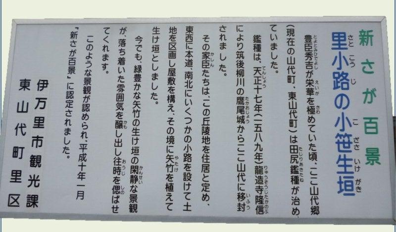 里小路の小笹生垣   てるてるのブログ