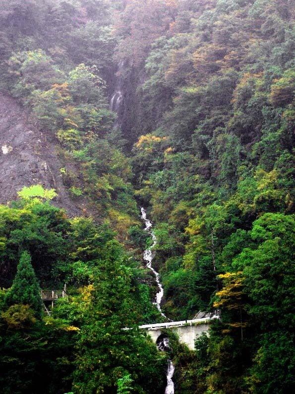 南アルプス街道の滝たちⅡ・早川町・山梨県 | しぶきの滝ブログ