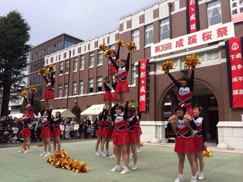 桜祭♪   成蹊大學應援指導部チアリーダー部DELPHIS
