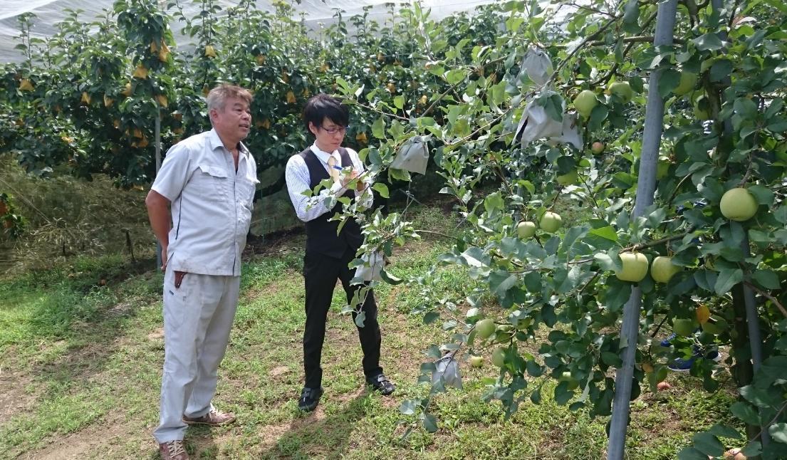 160820和歌山県かつらぎ町の果樹園 | 中野瑞樹『4000日フルーツ物語』the Japanese Fruitarian