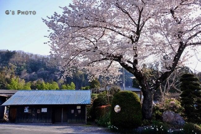 光影彩 飯能市【奧武蔵】の風景寫真