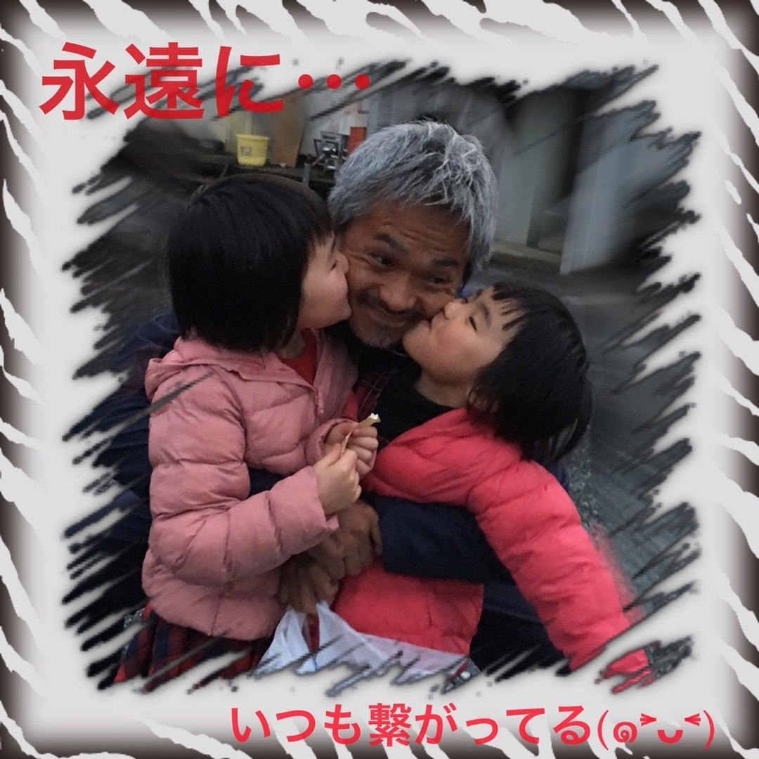 夢中になるもの!\(^^)/ | ☆夢中めだか☆のブログ