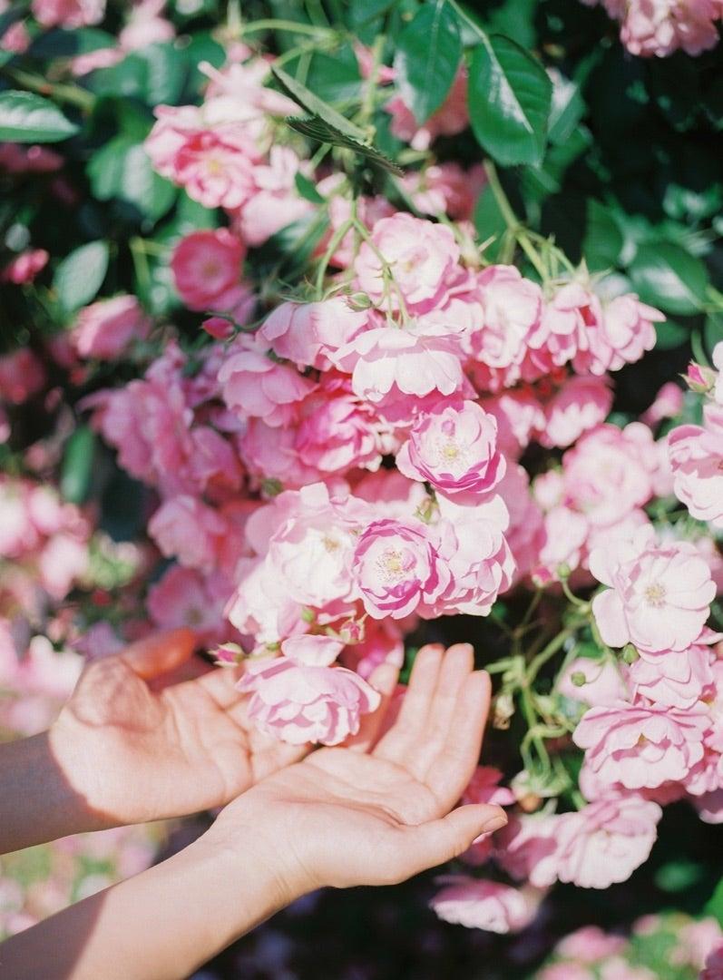 29歳!感謝を*   くらたまみオフィシャルブログ「愛のある毒を愛する花だけに」Powered by Ameba
