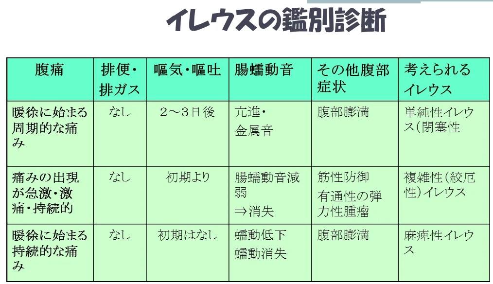 ヘルパー研修會及び勉強會R.1.10.18 | 研修會のブログ
