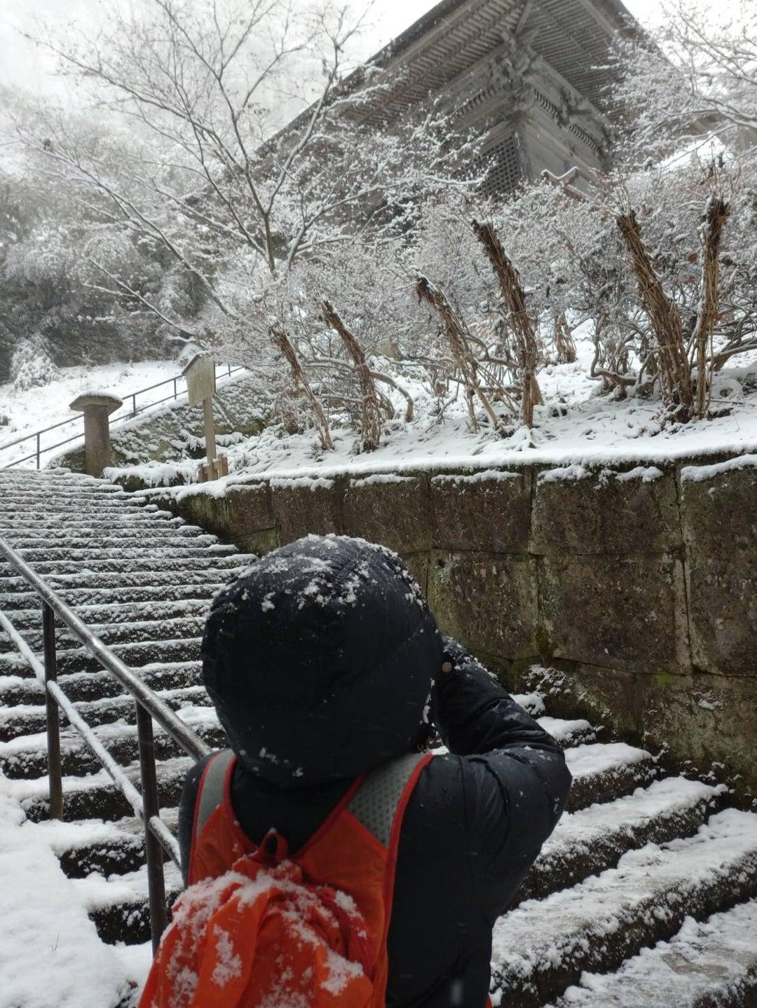 雪不足の一月   「この坂道」