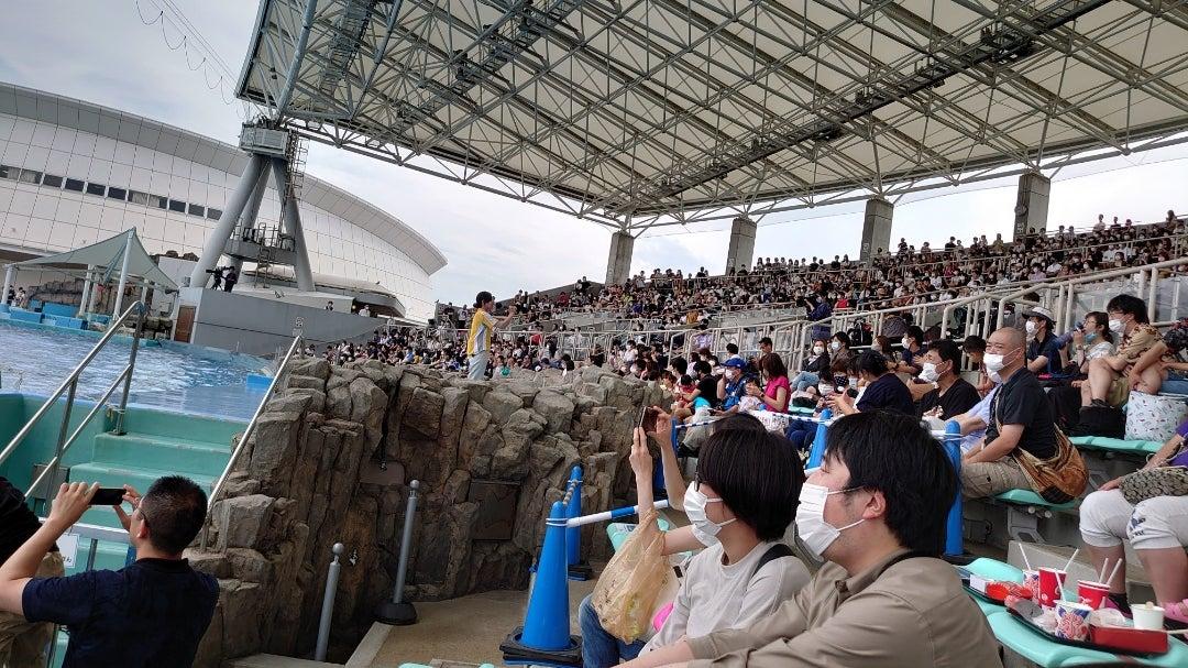 2020*6*28今週も名古屋港水族館に!   ブライト2929さんのブログ