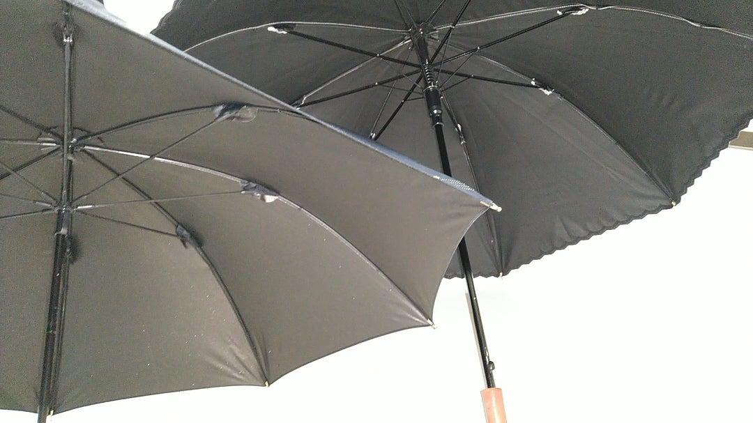日傘比べ 新しいほうが 負け K君(^^)   midorisakiの貓&ブログ