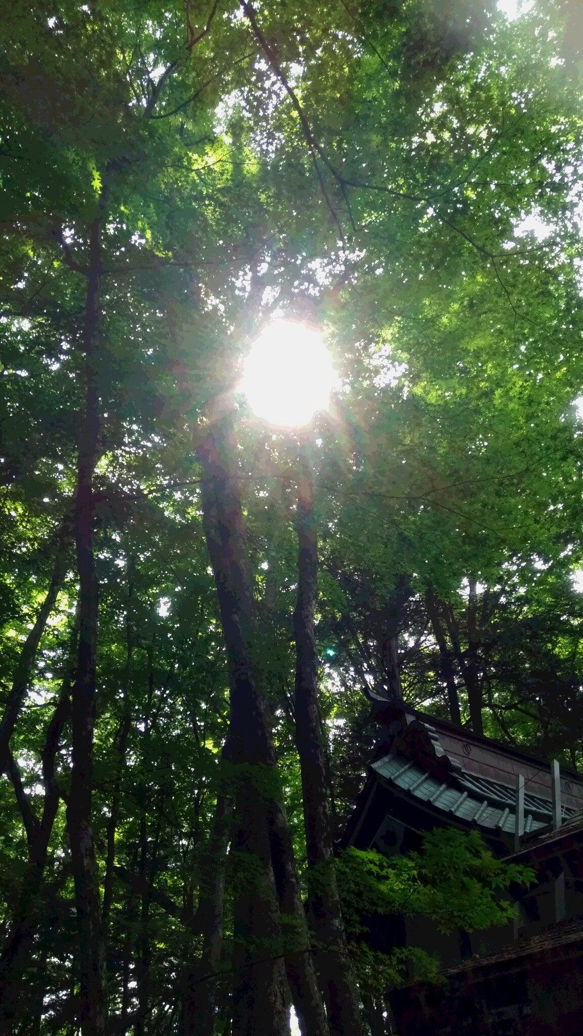 ~日本一の金運神社~【新屋山神社】*感動するほどの純粋で ...
