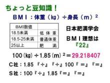 BMI數値を電卓裏技で計算しよう♪ | 溶巖浴珊瑚浴「ネコのねどこ」きまぐれ日記