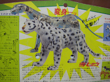 アーデン男爵blog-Snow Leopard