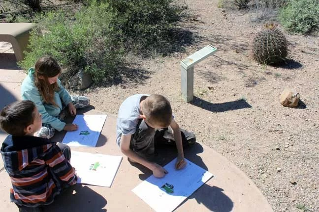 Kids working on their Junior Ranger books during our short trip to Tucson