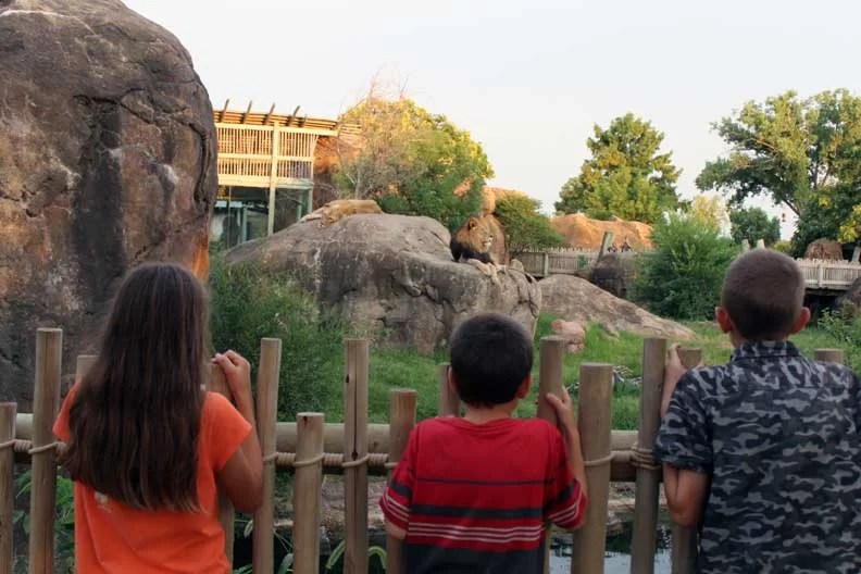 The Sedgwick County Zoo is worthy of being on Your Wichita Family Bucket List