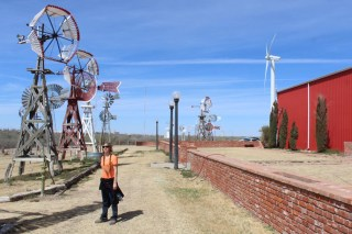 Girl by lots of windmills