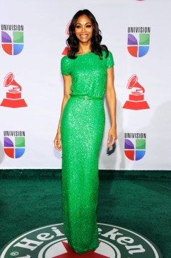 12th+Annual+Latin+GRAMMY+Awards+Arrivals+1RtrQmIOyv3l