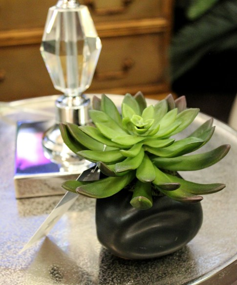 Tableside green plant in contemporary gray slate vase provides design interest in a small space