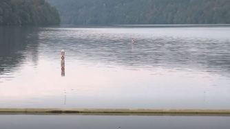 Image result for ADEM Investigates Fish Kill on Black Warrior River august 17