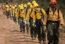 Oregon Wildland Firefighters
