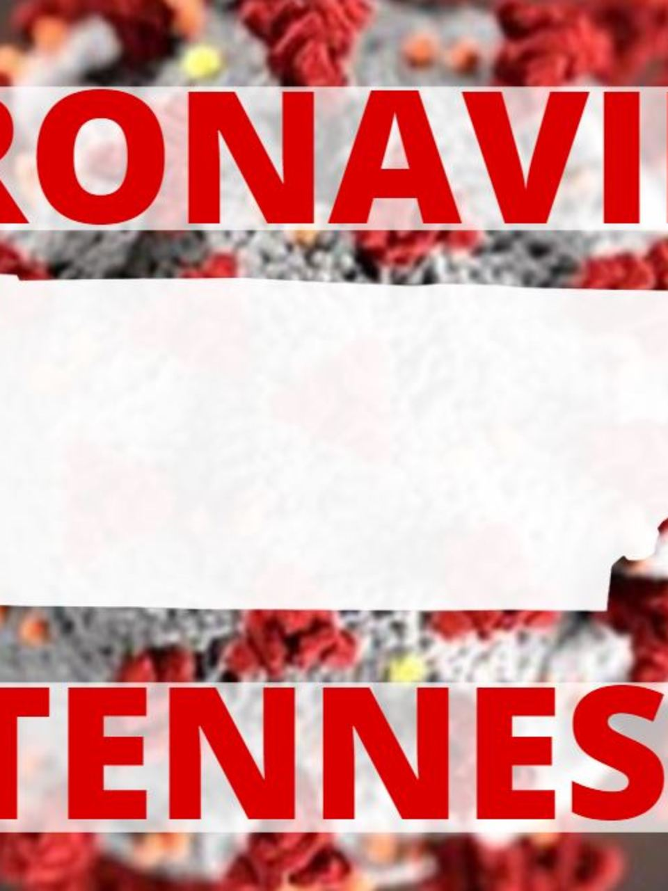 32 cases of novel coronavirus confirmed in Tennessee | WTVC