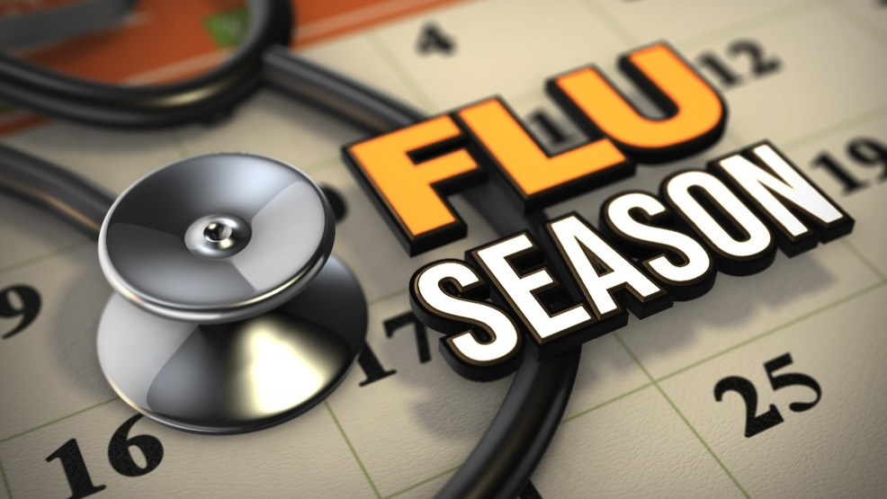 Kalamazoo doctor says to get the flu shot now   WWMT