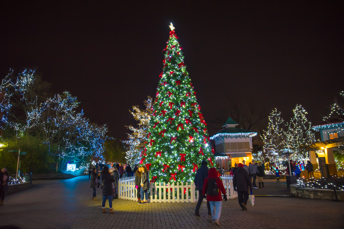 Cincinnati Zoo Festival Lights 2017