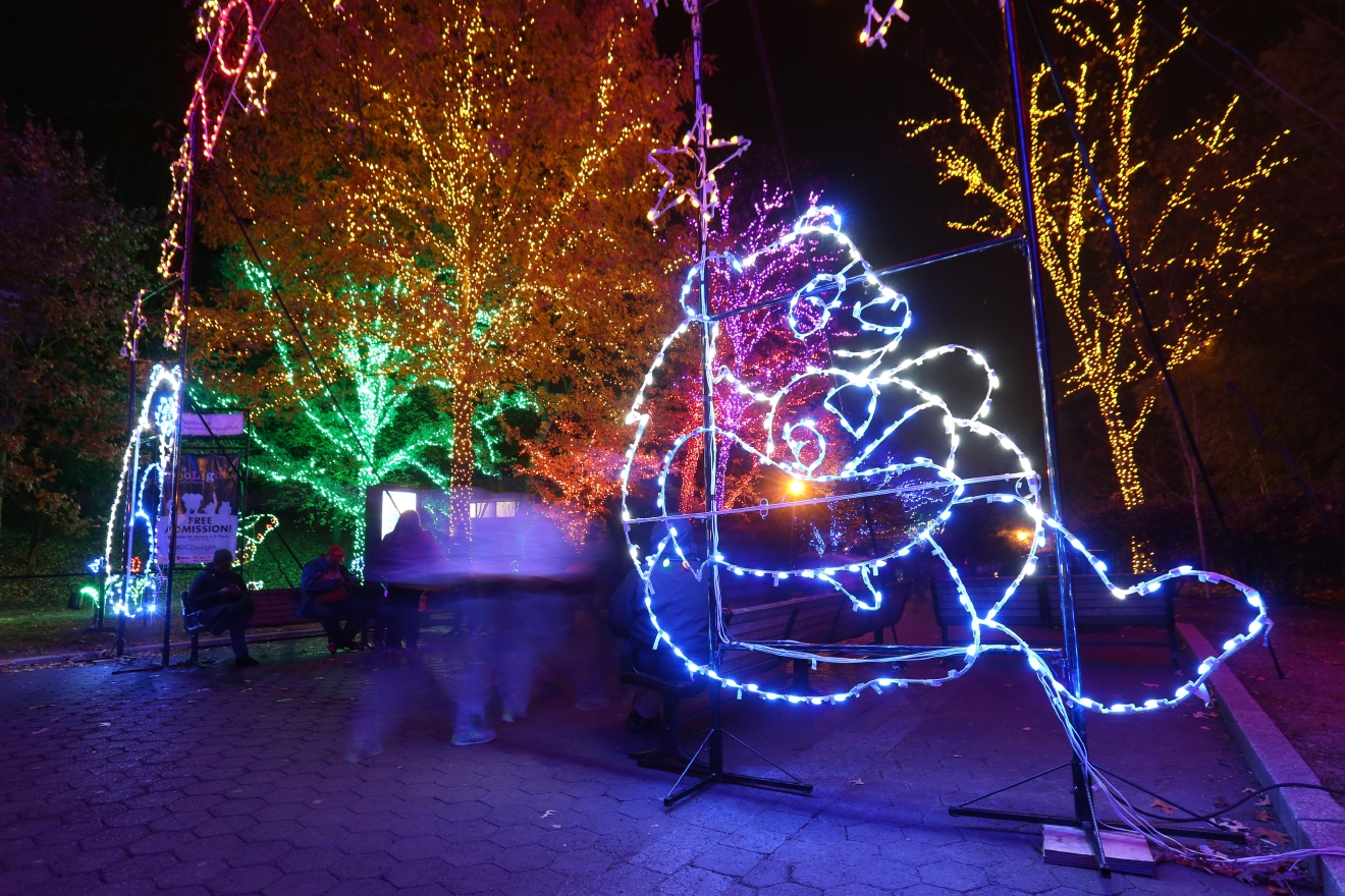 Zoo Lights Hours Dc