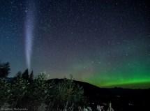 """""""steve """" Unique Aurora Phenomenon Captured Local"""