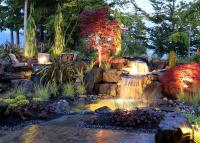 Photos: Pacific Northwest backyards and gardens | Seattle ...