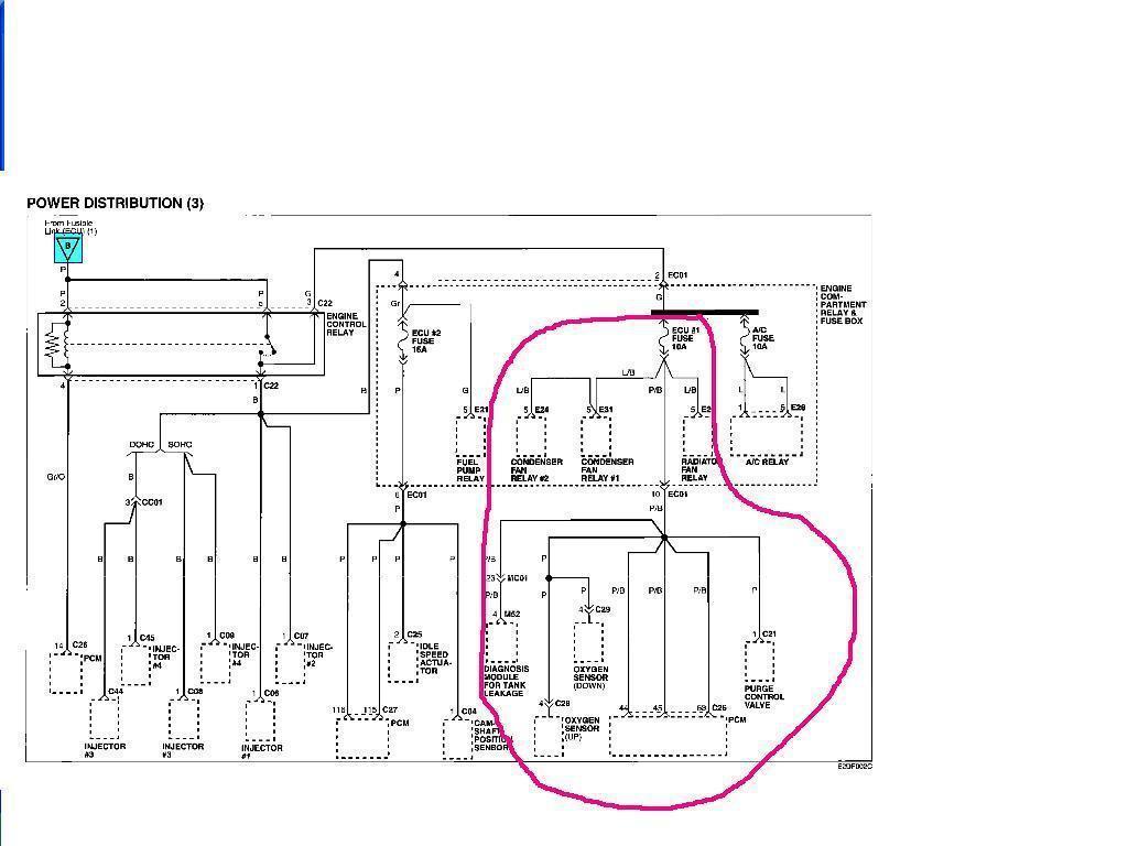 Basic Start Stop Wiring Diagram : Dol Starter Panel Wiring
