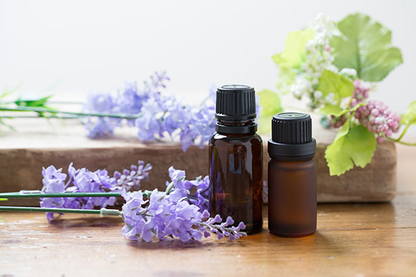 Image Result For Is Tea Tree Oil Good For Itchy Skin