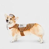 The Cutest Dog Halloween Costumes Ever - FabFitFun