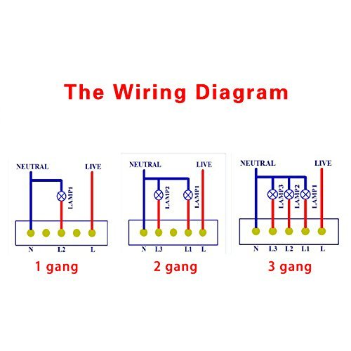 two gang schematic wiring diagram  wiring diagram for