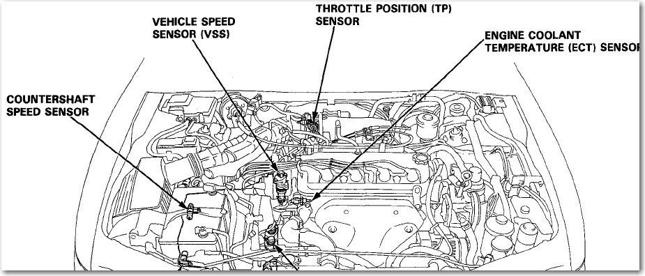 1994 Honda Accord Wiring Diagram : Honda Car Radio Stereo