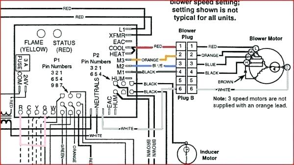 Goodman Furnace Control Board Wiring Diagram : Diagram Fan