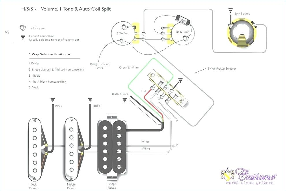 Squier P Bass Wiring Diagram Database