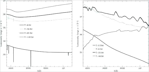 [ME_4564] Blank Graph Diagram Schematic Wiring